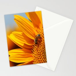 Sunflower & Bee Stationery Cards