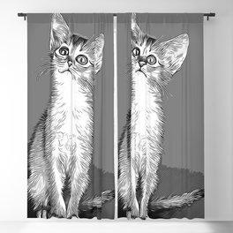 abyssinian cat kitten vector art white Blackout Curtain