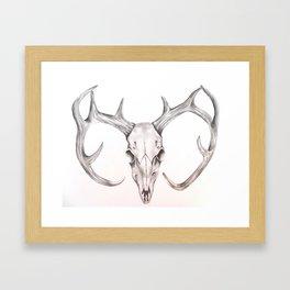 Back to Earth Framed Art Print