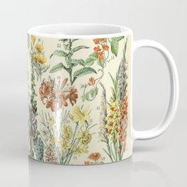 Adolphe Millot Vintage Fleurs Flower 1909 Coffee Mug