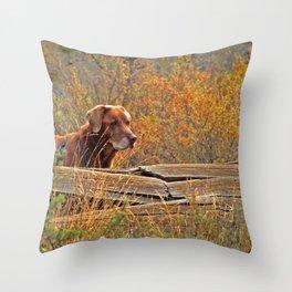 Chaco Throw Pillow