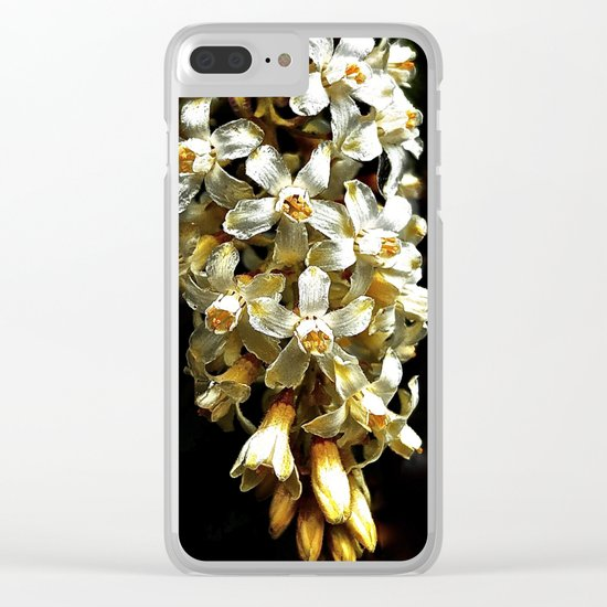 Flowering Currant, White Icicle Clear iPhone Case