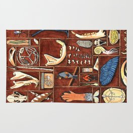 Curious Cabinet Rug