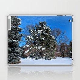 Tenacious Winter Laptop & iPad Skin