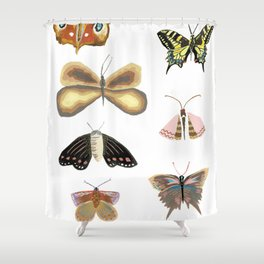 Butterflies and moths with patterns and ornaments on a white background Shower Curtain
