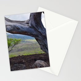 Tree and Maui Lava Flow Stationery Cards