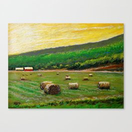 Sun Field Canvas Print