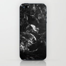 Dead Things Fall iPhone Skin