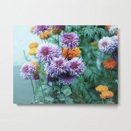 Blooming Multicolor Metal Print