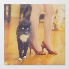 Catwalk. black tuxedo cat photograph Canvas Print