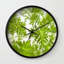 Pelargonium citrosum fresh foliage Wall Clock