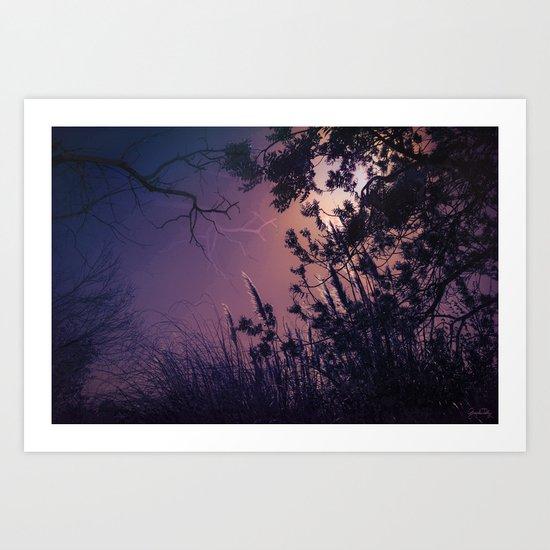 Moonlight Sonata (Tree and Reed Plant Silhouette) Art Print