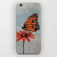 Majestic Monarch Butterfly iPhone & iPod Skin