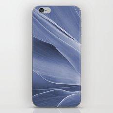 Blue Agave Attenuata iPhone & iPod Skin