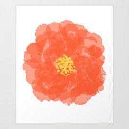 Coral Camellia Flower Art Print
