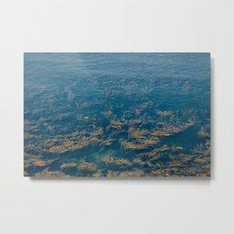 Anglesey Seaweed Metal Print
