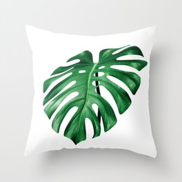 Split leaf philodendron leaf isolated on white Throw Pillow