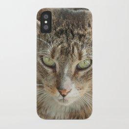 Street Cat iPhone Case