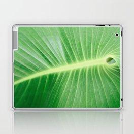 Palm CR Laptop & iPad Skin