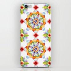 Beaux Arts Mandala iPhone & iPod Skin