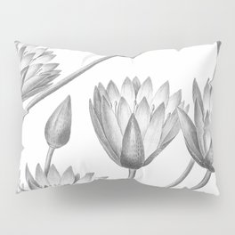 Water Lily Black And White Pillow Sham