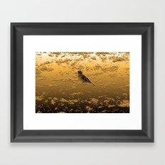 Bird on the Beach Framed Art Print