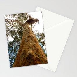 Sydney Red Gum Stationery Cards