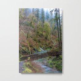 Silver Falls State Park Metal Print