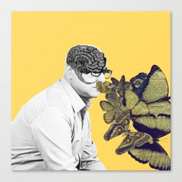Doctor, I feel butterflies in my head Canvas Print