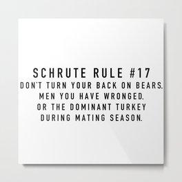 Rule 17 Metal Print