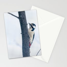 Great spotted woodpecker Stationery Cards