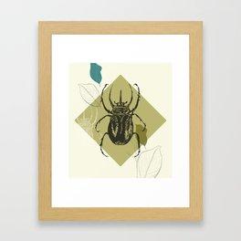 Beetle colors Framed Art Print