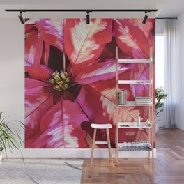 Vibrant Red Pink Christmas Holiday Poinsettia Leaves Wall Mural