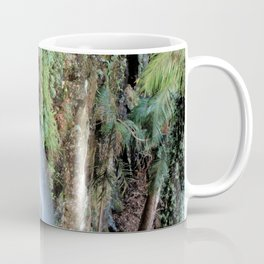 WITCHES FALLS Coffee Mug