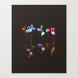 Rainbow Flamingos Canvas Print