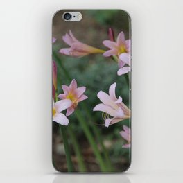 Beauty Surrounds Us iPhone Skin