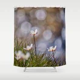 Mountains flowers. Endemic Shower Curtain