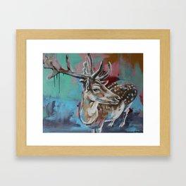 In headlights Framed Art Print