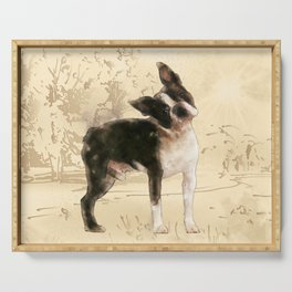 Boston Terrier Watercolor Digital Art Serving Tray