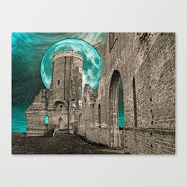 MOON FOLLY Canvas Print