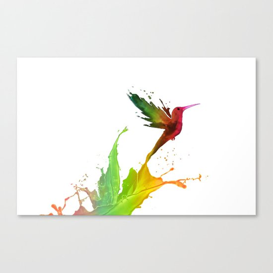 Humming Bird Colors Canvas Print