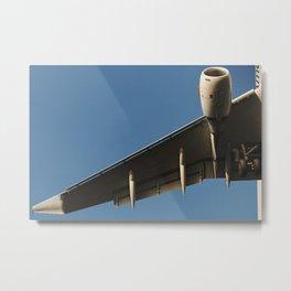 Art of Flight Metal Print