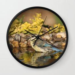 young bird bathes Wall Clock