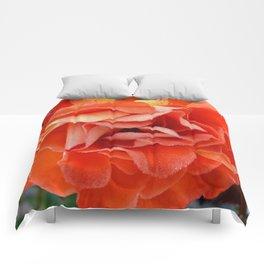 pandora's box Comforters
