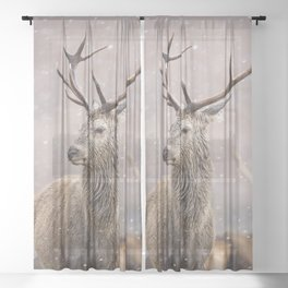 Christmas deer stag in the white snow winter forest Sheer Curtain