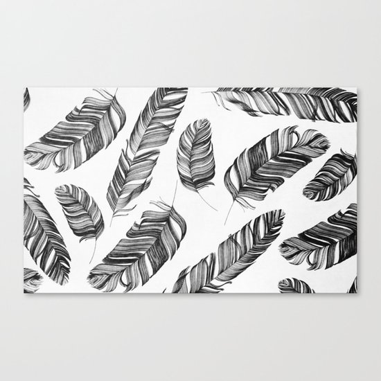 Black and white feathers Canvas Print