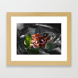 """As Daylight Ends"" - Cecropia Moth Painting Framed Art Print"