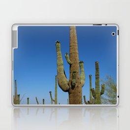 In The Sonoran Desert Laptop & iPad Skin