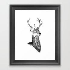 Noble Stag Framed Art Print