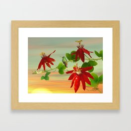 Hummingbird and Passion Flower Framed Art Print